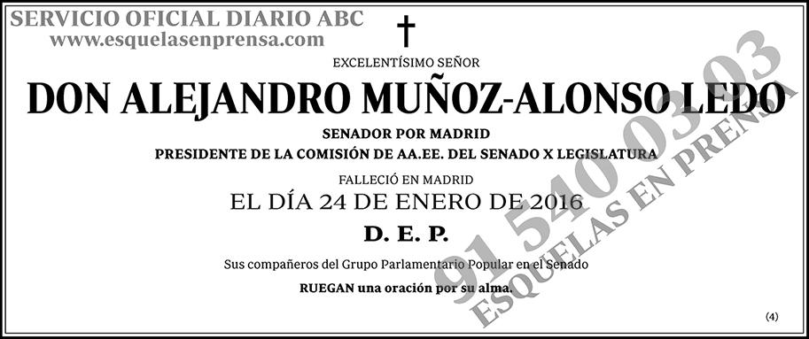 Alejandro Muñoz-Alonso Ledo